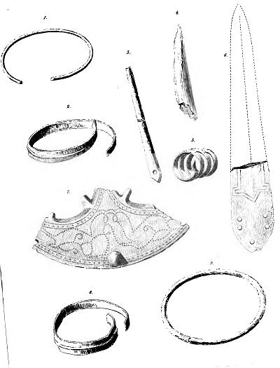 Il phlebologist in Tjumen kotelnik